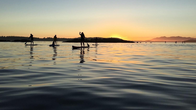 https://southislandsup.com/wp-content/uploads/2021/06/Tofino-SUP-sunset-Opt.jpg